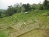 indonesie_2917